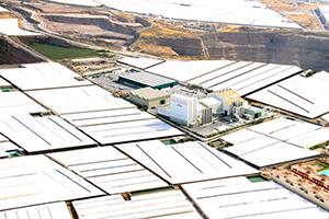 Morera y Vallejo Industrial